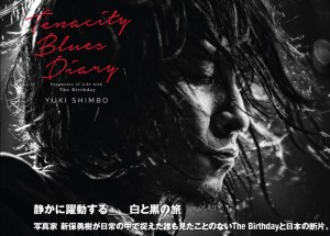新保勇樹写真集『Tenacity Blues Diary』